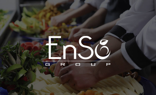 Diseño web EnSo Group